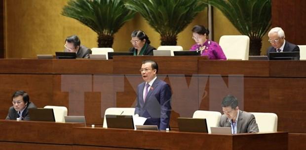 第十四届国会第四次会议:财政部长丁进勇接受国会代表质询 hinh anh 2