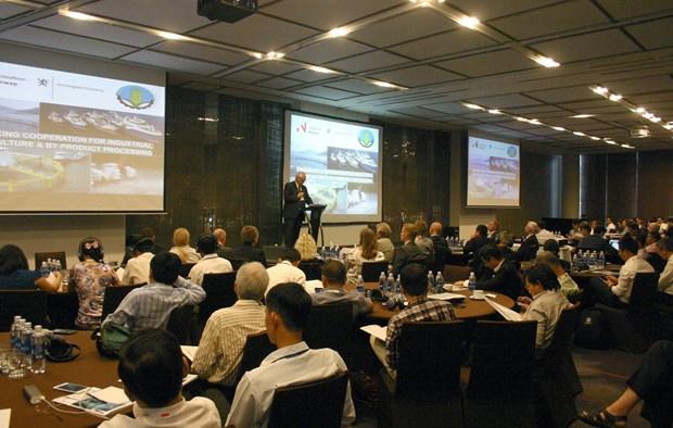 越南与挪威分享工业化水产养殖和配料加工的经验 hinh anh 1