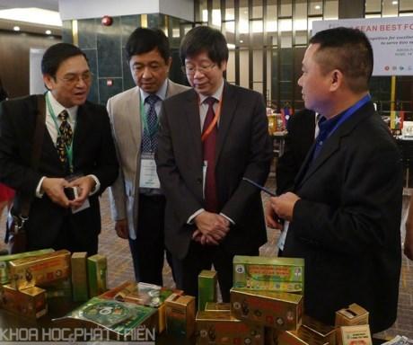 促进东盟食品科学技术合作 hinh anh 1