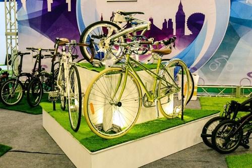2017年越南国际自行车、电动车及零件展在河内开展 hinh anh 1