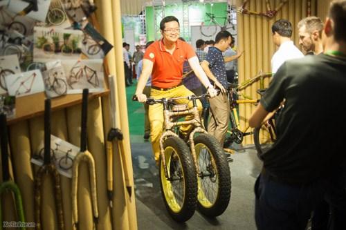 2017年越南国际自行车、电动车及零件展在河内开展 hinh anh 2