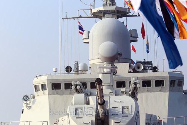 东盟各国海军加强合作保护海洋环境 hinh anh 2