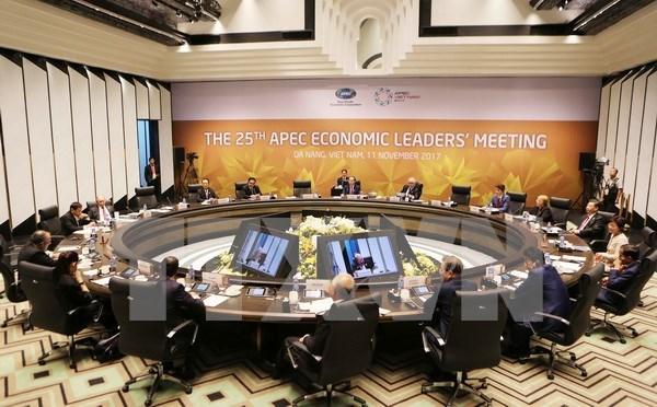 国际舆论:APEC各成员经济体领导人把人民和企业放在中心位置 hinh anh 1