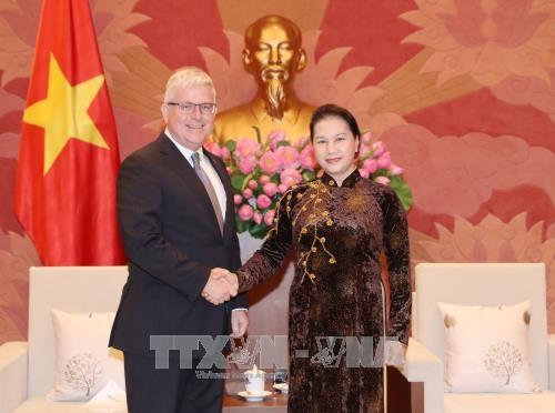 越南国会主席阮氏金银会见澳大利亚驻越大使克雷格•奇蒂克 hinh anh 1