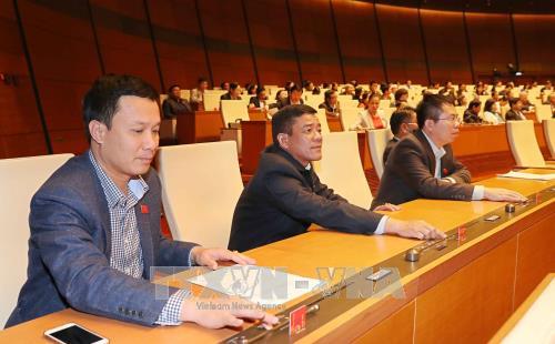 第十四届国会第四次会议通过两部法律和一项决议 hinh anh 1