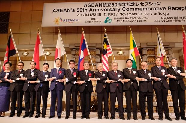 日本高度评价东盟对地区和平与繁荣的贡献 hinh anh 1