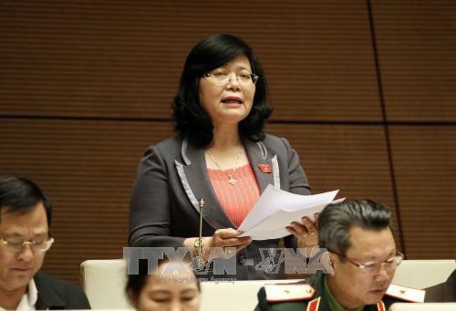 越南十四届国会第四次会议讨论《反腐败法修正案(草案)》 hinh anh 2