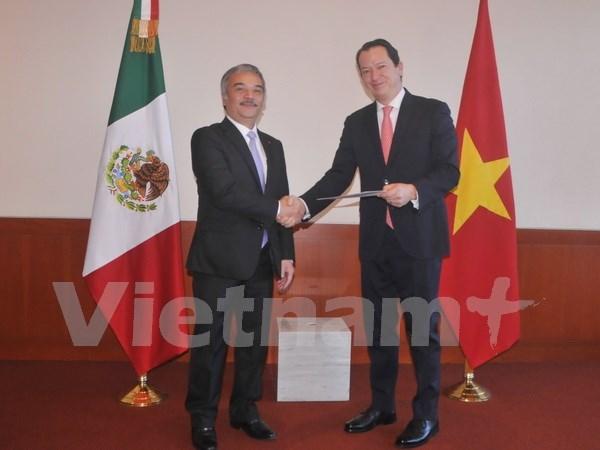 越南新任驻墨大使:加强越墨高层交往及推进合作机制高效运行是重点任务 hinh anh 1
