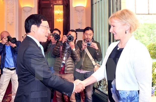 越南政府副总理兼外长范平明与瑞典外交部长玛戈特・瓦尔斯特伦举行会谈 hinh anh 1