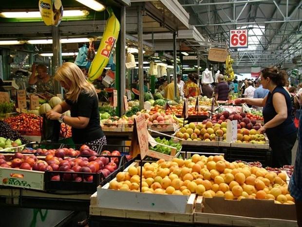 越南——意大利农产品与传统美食富有潜力的市场 hinh anh 2