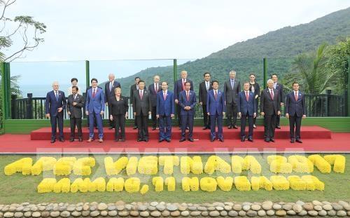 陈大光:越南在APEC合作进程中打下深深的烙印 hinh anh 2