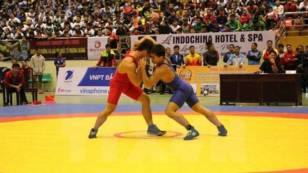 东南亚古典式自由式摔跤锦标赛:越南摔跤队获得绝对胜利 hinh anh 1