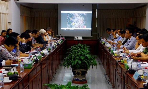 世行将加大对芹苴市城市发展项目的监督检查力度 hinh anh 1