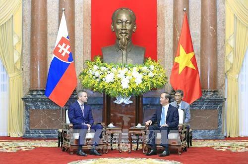 越南国家主席陈大光会见斯洛伐克副总理佩特尔·佩列格里尼 hinh anh 1