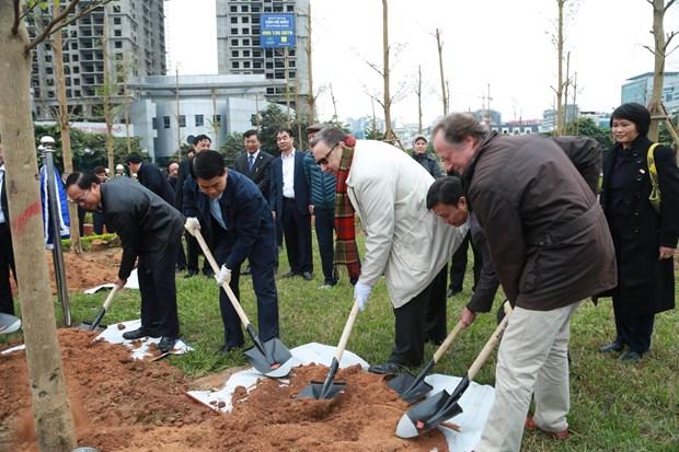 河内市种植100棵树庆祝芬兰国庆100周年 hinh anh 3