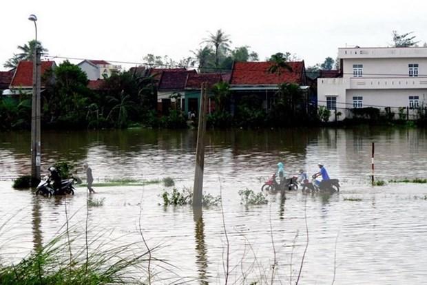 旅外越南人为国内受灾群众开展捐款活动 hinh anh 2