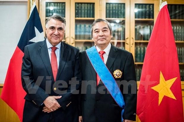 越南驻智大使荣获智利政府的十字勋章 hinh anh 1
