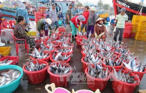 ICFO为越南中部地区渔民提供援助 hinh anh 1