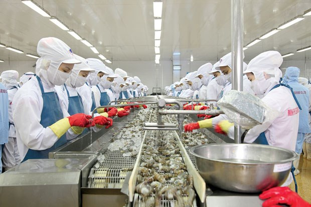 今年前11月越南水产品出口额达330亿多美元 hinh anh 1