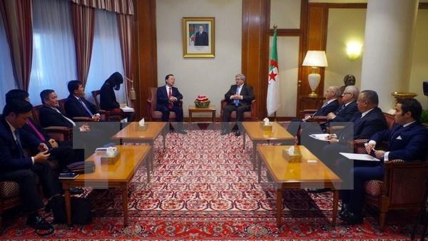 阿尔及利亚总理希望加强两国关系 hinh anh 1