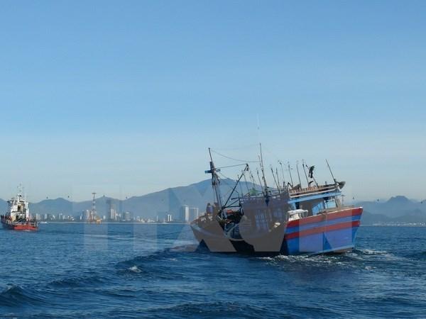 抓紧开展头顿海域失踪人员搜救活动 hinh anh 1