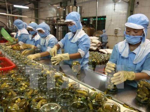 越南与韩国促进农产品贸易发展 hinh anh 1