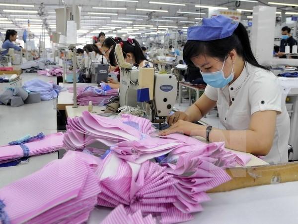 越南经济发展的新动力 hinh anh 2