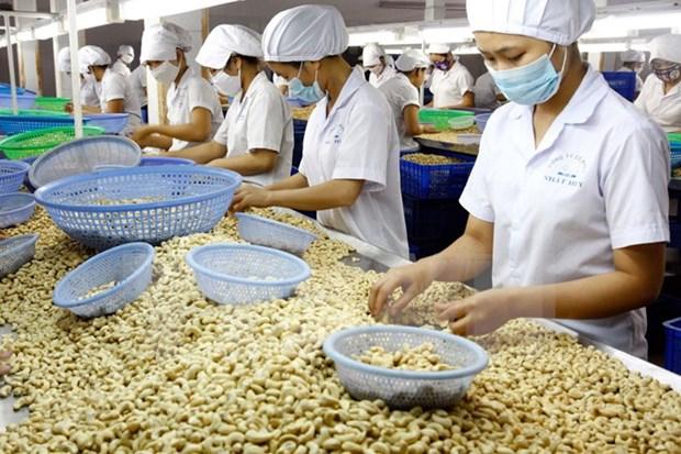 越南对美国的贸易顺差额约达270亿美元 hinh anh 1