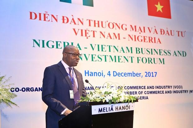 尼日利亚驻越大使:越尼多领域合作潜力巨大 hinh anh 3