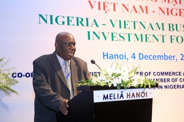 尼日利亚驻越大使:越尼多领域合作潜力巨大 hinh anh 4