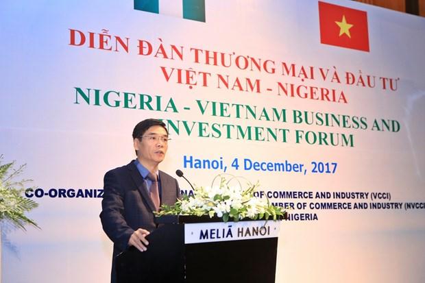 尼日利亚驻越大使:越尼多领域合作潜力巨大 hinh anh 2