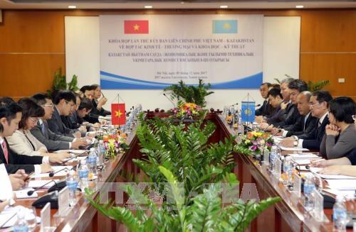 进一步加强越南与哈萨克斯坦的贸易关系 hinh anh 1