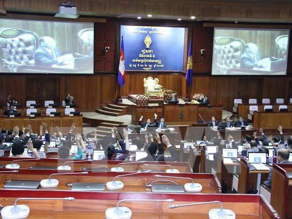 柬埔寨国会组织机构健全 hinh anh 1