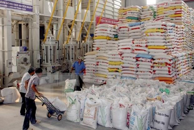 越南中标向韩国出口1.1万余吨大米 hinh anh 1