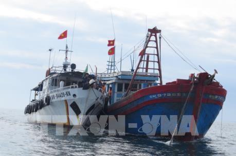 平顺省多错并举阻止渔船非法进入外国海域捕捞的情况 hinh anh 1