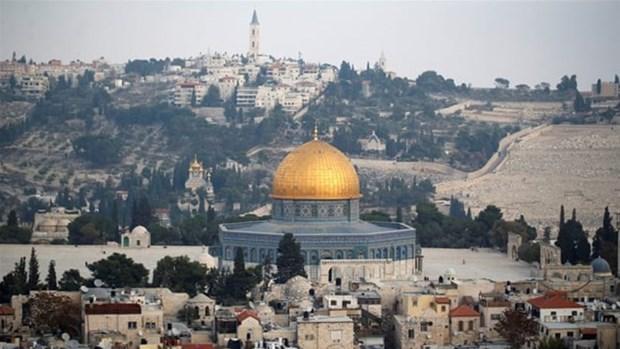 越南外交部发言人:有关耶路撒冷的所有解决方案应遵守国际法 hinh anh 1