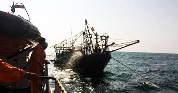 巴地头顿省:将海上受伤的海外水手安全送上岸救治 hinh anh 1