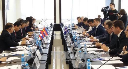 促进各政党在推动俄罗斯与东盟关系发展的作用 hinh anh 1
