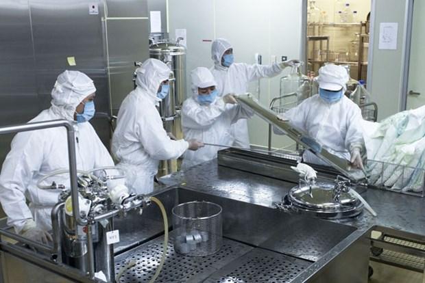 越南开始生产口蹄疫疫苗 hinh anh 1