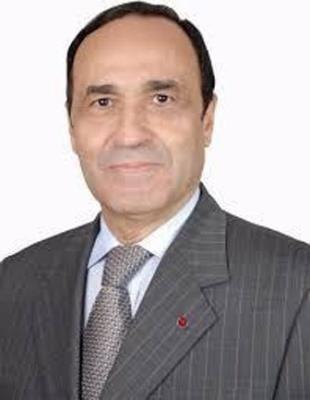 摩洛哥众议院议长哈比博·马勒克即将对越南进行正式访问 hinh anh 1