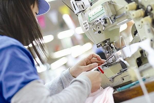2017年越南纺织品服装出口额有望达310亿美元 hinh anh 1