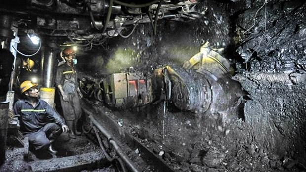今年12月份TKV力争实现煤炭生产量达240万吨 hinh anh 1