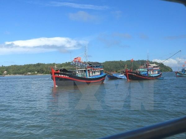 1982年《联合国海洋法公约》:确立越南在东海的主权及合法利益的法律基础 hinh anh 1