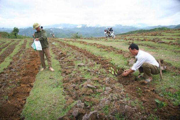 莱州边境地区人民努力做好新农村建设工作 hinh anh 1