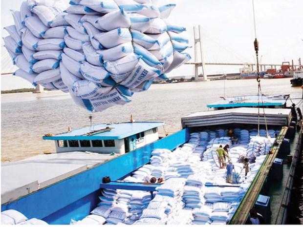 2018年越南大米出口量有望达600万吨 hinh anh 1