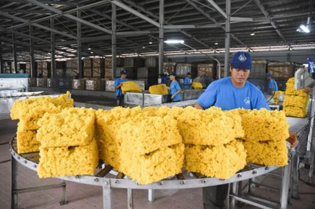 越南橡胶出口增速反弹 hinh anh 2
