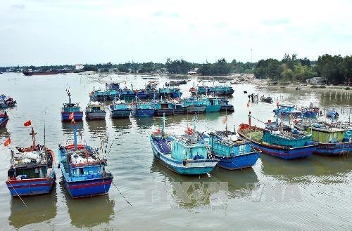 越南海岛:推动海洋经济发展与保障国防安全相结合 hinh anh 1