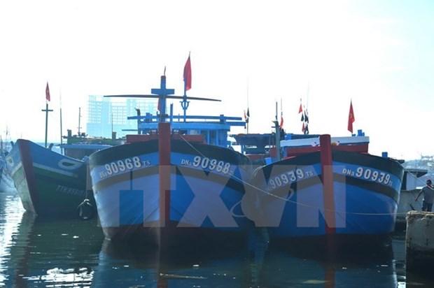 越南海岛:推动海洋经济发展与保障国防安全相结合 hinh anh 2