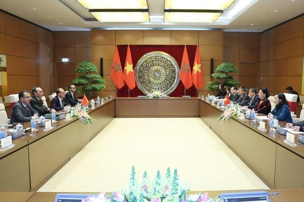 越南国会主席阮氏金银与摩洛哥众议院议长哈比博·马勒克举行会谈 hinh anh 2