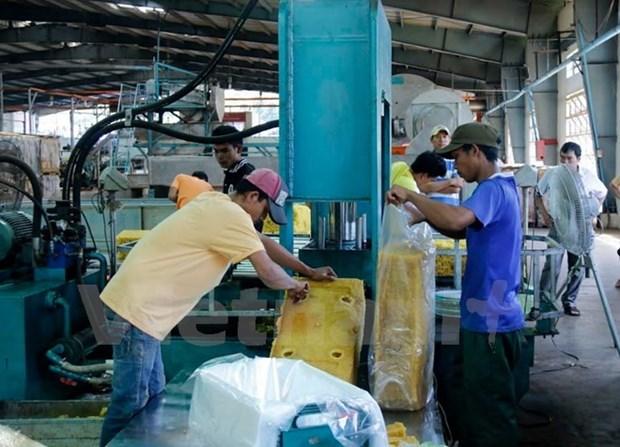 越老建交55周年:越南企业帮助老挝各地方实现减贫 hinh anh 2
